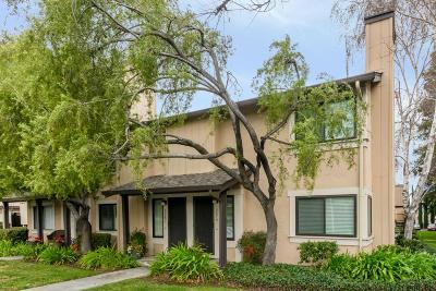 San Jose Condo/Townhouse For Sale: 3579 Judro Way