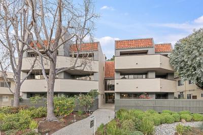 San Mateo County, Santa Clara County Condo/Townhouse For Sale: 616 Ansel Road #5