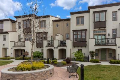 Mountain View Condo/Townhouse Pending Show For Backups: 631 Tyrella Avenue