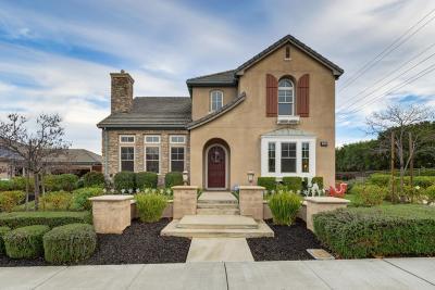 Pleasanton Single Family Home For Sale: 964 Mingoia Street