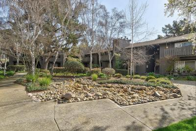 Mountain View Condo/Townhouse Pending Show For Backups: 50 E Middlefield Road #22