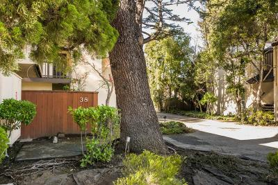 San Mateo Condo/Townhouse For Sale: 38 Crystal Springs Road #3