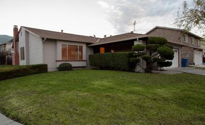 Milpitas Single Family Home For Sale: 262 Falcato Drive