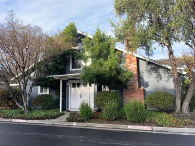 Los Gatos Condo/Townhouse For Sale: 102 Birch Wood Court