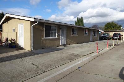 San Jose Multi Family Home For Sale: 1252 Palm Street