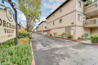 Campbell Condo/Townhouse For Sale: 374 Union Avenue #A