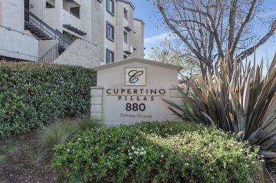 Sunnyvale Condo/Townhouse Pending Show For Backups: 880 E Fremont Avenue #204