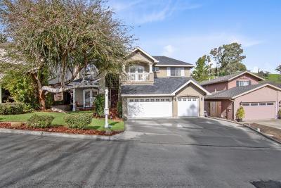 San Jose Single Family Home For Sale: 6233 Cahalan Avenue