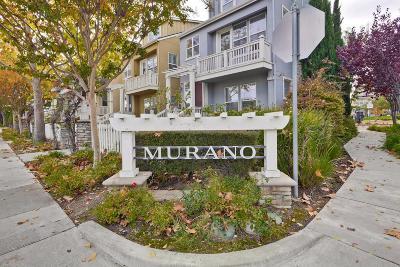 Cupertino Single Family Home For Sale: 11523 Bianchini Lane