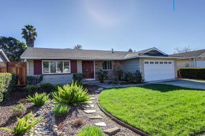 San Jose Single Family Home For Sale: 672 Pronto Drive