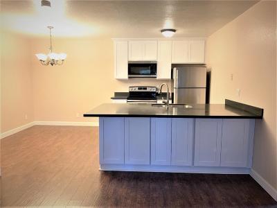 San Jose Condo/Townhouse For Sale: 247 N Capitol Avenue #259