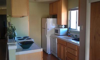 Rental For Rent: 475 Plum Street #B