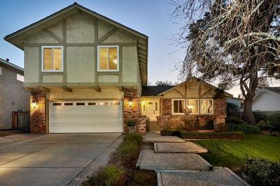 San Jose Single Family Home For Sale: 6535 Skyfarm Drive