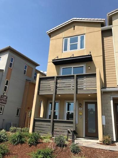 Milpitas Condo/Townhouse For Sale: 399 Desert Holly Street