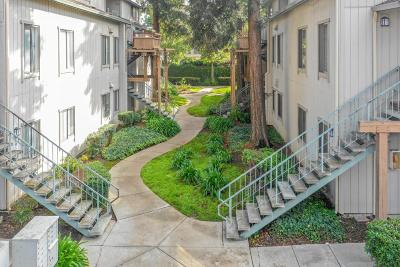 San Jose Condo/Townhouse For Sale: 1988 Tradan Drive