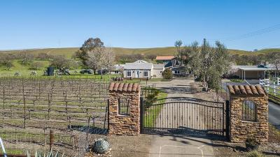 Livermore Single Family Home For Sale: 5556 Mines Road