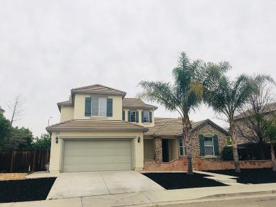 Tracy Single Family Home For Sale: 2379 Ogden Sannazor Court