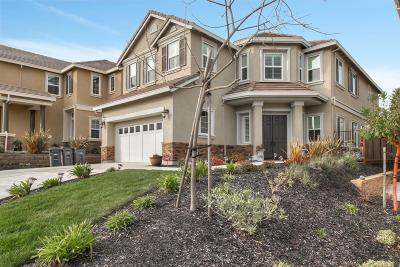 Dublin Single Family Home For Sale: 7566 Mindy Mae Lane