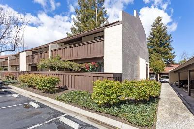 Sunnyvale Condo/Townhouse For Sale: 1001 E Evelyn Terrace #106