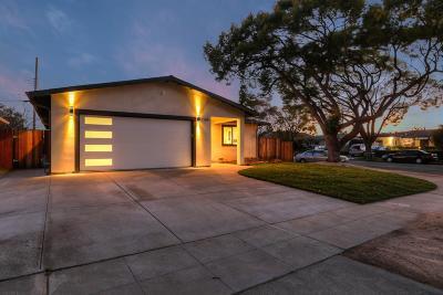 Santa Clara Single Family Home For Sale: 2598 Amethyst Drive