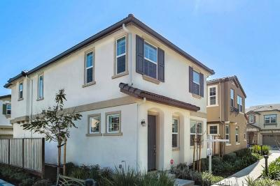 Hayward Single Family Home For Sale: 1513 Sylvia Street