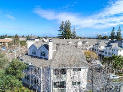 Sunnyvale Condo/Townhouse For Sale: 902 Sunrose Terrace #304