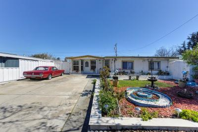 Sunnyvale Single Family Home For Sale: 1313 Socorro Avenue