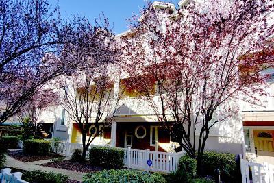 San Jose Condo/Townhouse For Sale: 2414 Falk Court