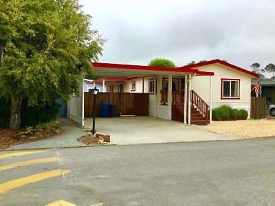 Half Moon Bay Mobile Home Pending Show For Backups: 150 Canada Cove Avenue