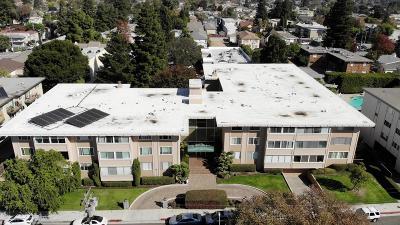 San Mateo Condo/Townhouse For Sale: 234 Elm Street #110