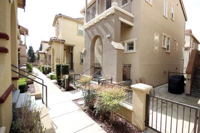 Fremont Single Family Home Pending Show For Backups: 49030 Feather Grass Terrace