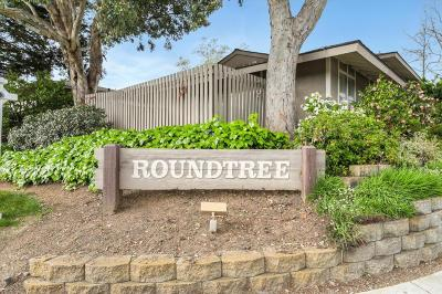 Cupertino Condo/Townhouse For Sale: 10588 White Fir Court