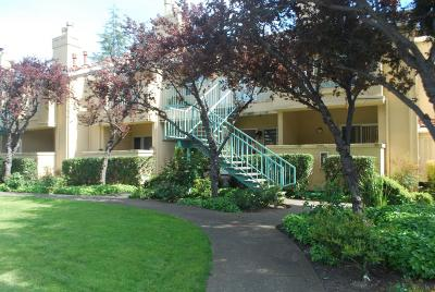 Milpitas Condo/Townhouse For Sale: 209 Sunnyhills Court #209