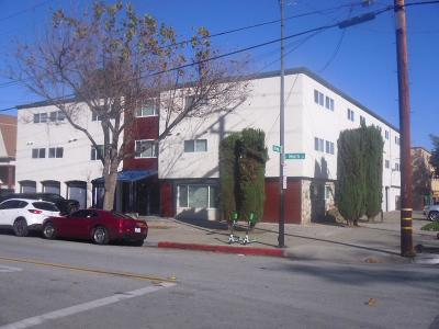 San Jose Multi Family Home For Sale: 598 S 9th Street