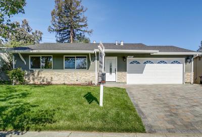 San Jose Single Family Home For Sale: 1853 Fallbrook Avenue