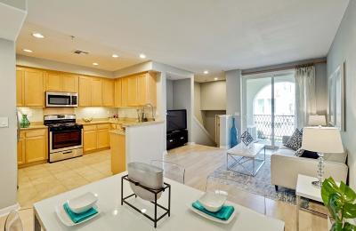 Milpitas Condo/Townhouse For Sale: 138 Parc Place Drive