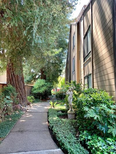 Mountain View Condo/Townhouse For Sale: 1963 Rock Street #24