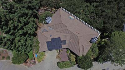 Cupertino Single Family Home For Sale: 10338 Scenic Boulevard