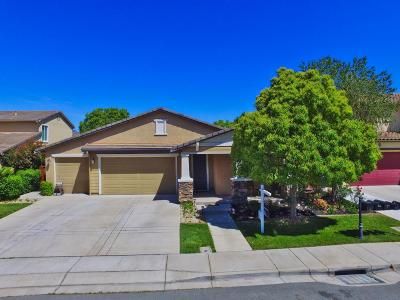 Oakley Single Family Home Pending Show For Backups: 17 Red Barn Court