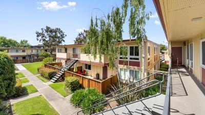 San Mateo Condo/Townhouse For Sale: 3049 Los Prados Street #223