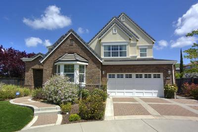San Ramon Single Family Home For Sale: 2718 Piccadilly Cir