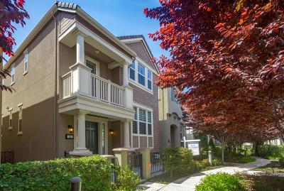 Santa Clara Single Family Home For Sale: 39 Conner Place