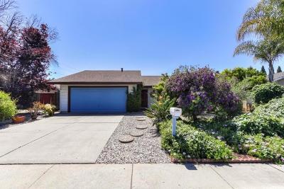 Santa Clara Single Family Home Pending Show For Backups: 2316 Remo Court
