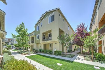 Milpitas Condo/Townhouse For Sale: 1461 Coyote Creek Way
