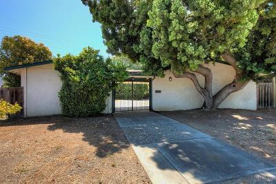 Sunnyvale Single Family Home For Sale: 536 Hawthorn Avenue