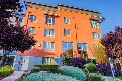 Milpitas Condo/Townhouse For Sale: 1101 S Main Street #209