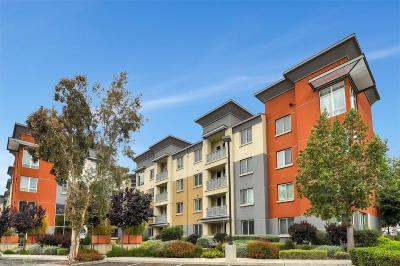 Milpitas Condo/Townhouse For Sale: 1101 S Main Street #117