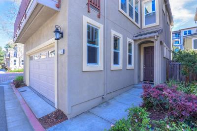 Santa Clara Single Family Home For Sale: 3564 Stout Place