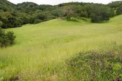 Gilroy Residential Lots & Land For Sale: 2031 Portmarnock Way