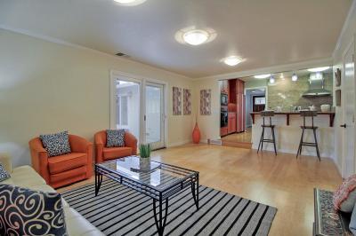Santa Clara Single Family Home For Sale: 641 Briarcliff Court